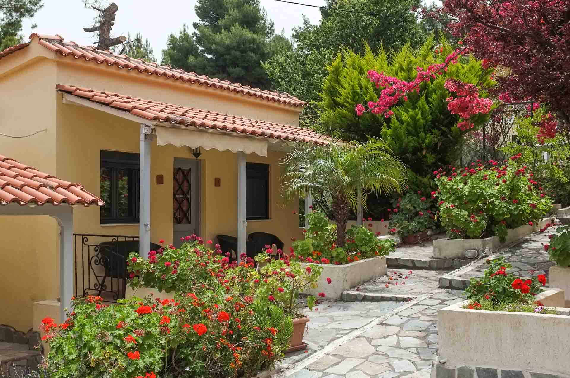 A tranquil bungalow, surrounded by the pinewood forests of Euboea island and a sandy beach with crystal clear waters. An ideal destination in Greece.